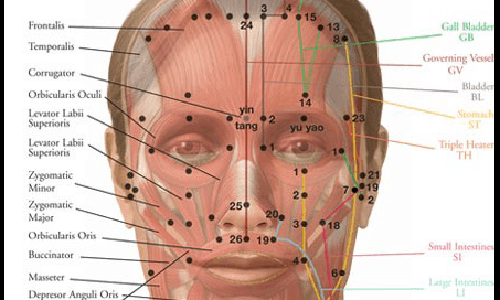 Acupuncture Center Toronto - Cosmetic acupuncture points